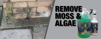 Get Better Results: Best Moss and Algae Stain Remover