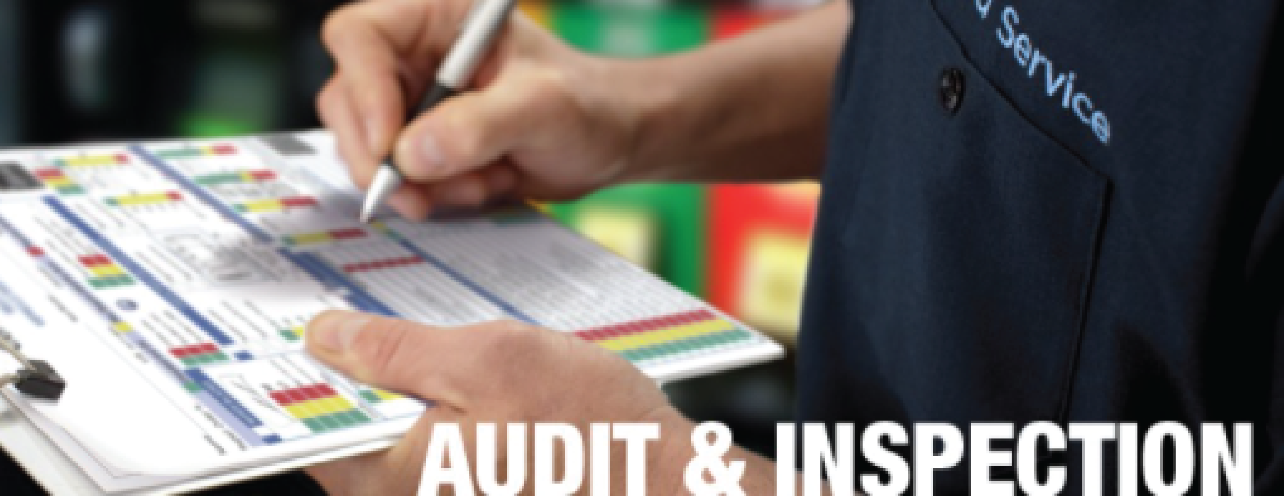 Site Audit and Inspection Helpful Tips
