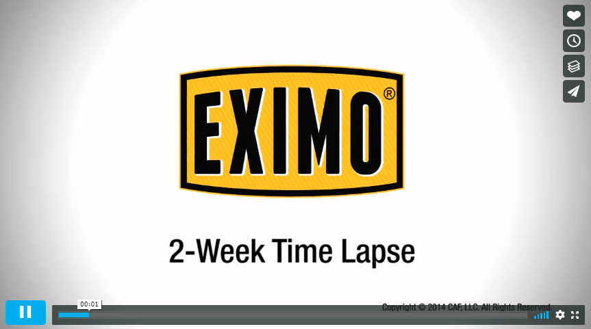 eximo garage best concrete cleaner